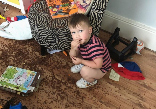 three year old romeo surrounded by cereal on the floor
