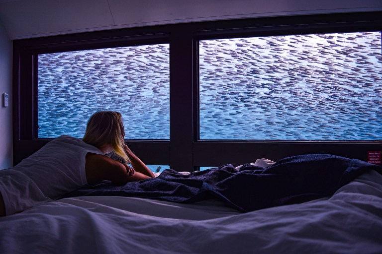 hayley lewis staying in reefsuites on great barrier reef