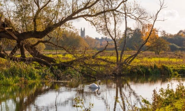 River Waveney at Bungay Common.