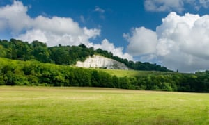 Chalk pit on North Downs Way, Surrey.