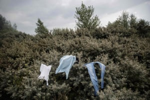 Migrants' clothes dry on trees at a camp on the outskirts of Calais