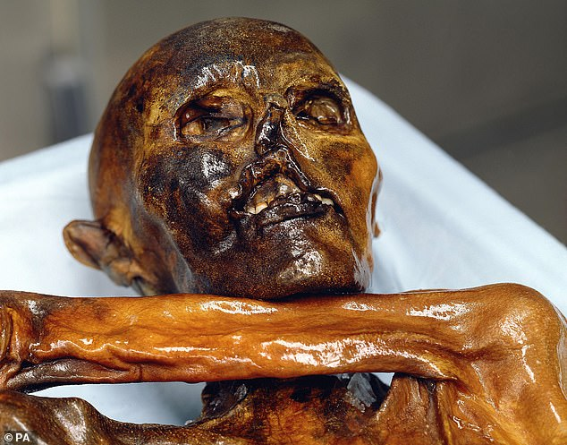 One of the most famous discovers in the Alpine was 'Otiz' (pictured) in 1991, which was the preserved body of a 5,300-year-old warrior found in the Italian Tyrol region