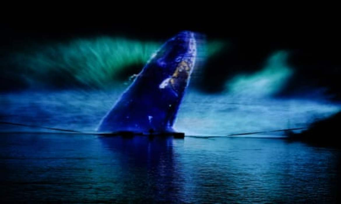 A light artwork featuring the projection of a whale emerging from the River Wear