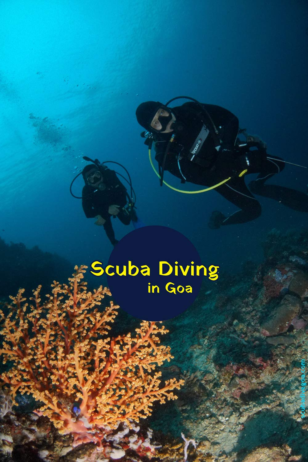 Experience Scuba Diving at Grand Island in Goa 7