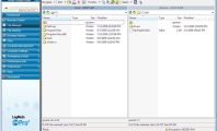 Organize the Remote Access with LogMeIn : Download LogMeIn