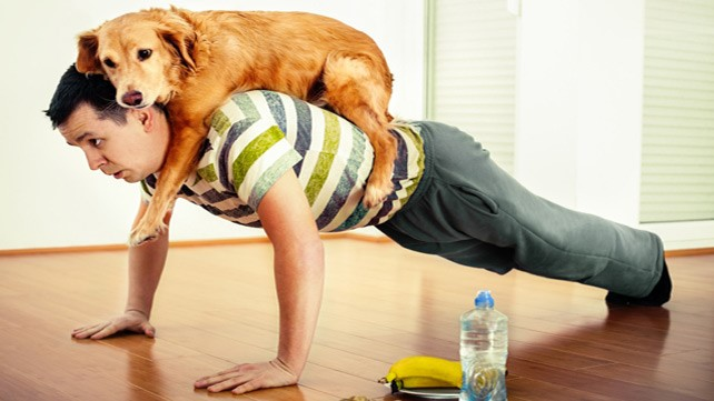 How Pets Can Be an Effective Lifestyle and Health Booster?