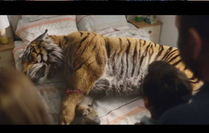 H συγκινητική διαφήμιση της WWF για τα φετινά Χριστούγεννα