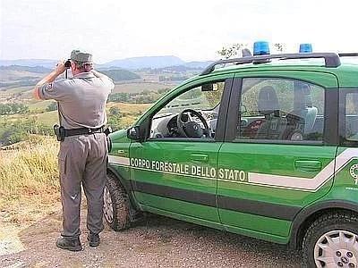 guardia forestale concorsi pubblici