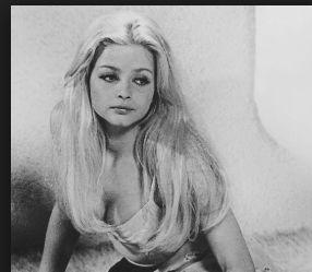 La suocera del premier Giuseppe Conte è la cantante e attrice Erotica  Ewa Aulin