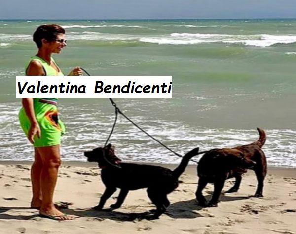 La giornalista sky si diverte con i suoi cani al mare