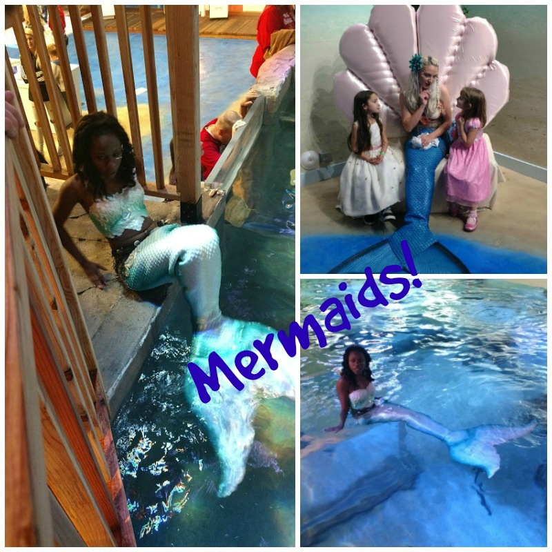 Seaquest mermaids