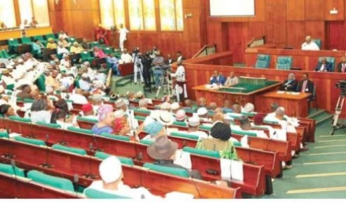 House Of Representative Moves To Include Lagos As NDDC State
