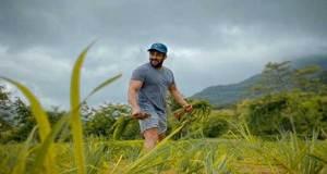 salman-khan-planted-paddy-plants-in-farm