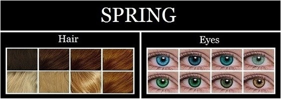 spring type characteristics
