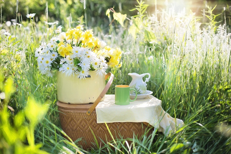 Herbalife Stress Management Product Benefits A Tea Party Set Up in a Field