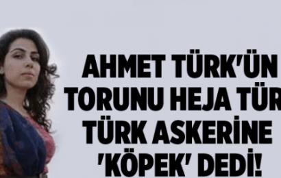 Ahmet Türk'ün Torunu Türk Askerine 'Köpek' Dedi