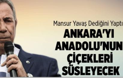 Mansur Yavaş Sözünü Tutmaya Devam Ediyor Ankara Sokaklarını Anadolu Çiçekleri Süsleyecek