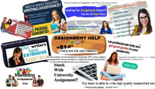Online 'help' for course assignments – make sure you are not ripped off