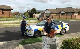 Waikato Police bring cheer to 5-years-old b'day boy