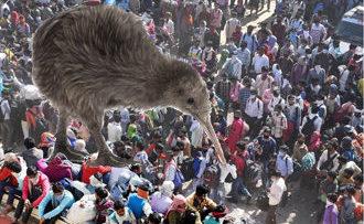 'Abandoned' Kiwis stuck in India seek govt action – Now
