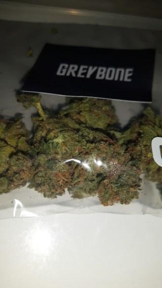 GreyBone du Grey Area