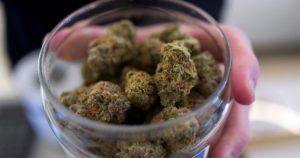 Cannabis médical au Tennessee