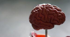CBD et Alzheimer