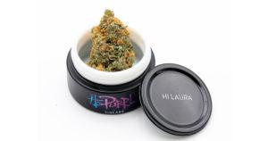 Le cannabis de Steve Urkel