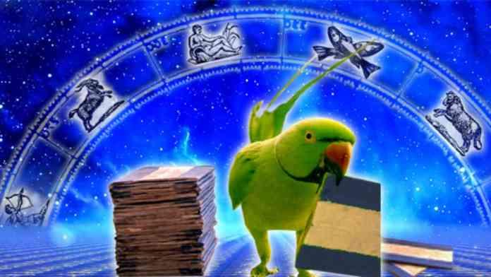 parrot-astrology