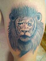 Lion Tattoo - Tatouage Lion