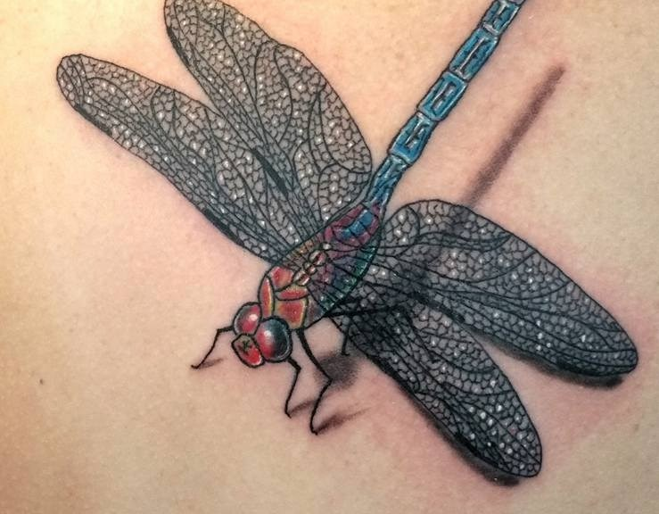 Tatouage libellule - Dragonfly tattoo