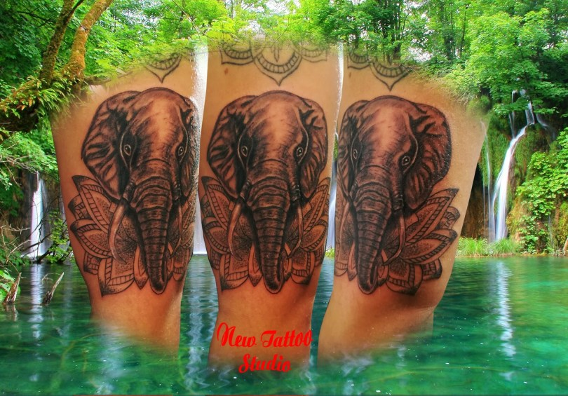 Elephant arm tattoo - Tatouage Elephant bras