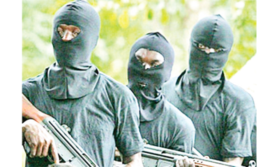 North-West govs grant amnesty to cattle rustlers, bandits
