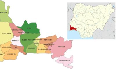 Ogun West: The choice before APC