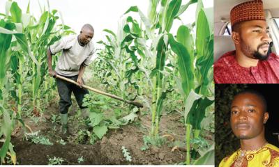 Recession turned us to farmers -Graduates