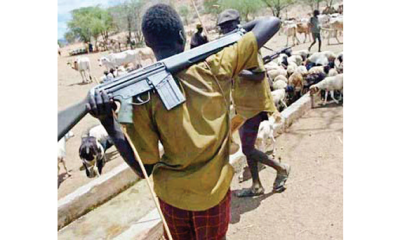 Plateau: Herdsmen kill five, burn 40 houses, farmlands