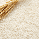 FAO: Unfavourable weather to affect 513.5m tonnes of rice production, others