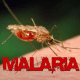 Mortein partners state ministries to tackle malaria