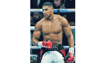 Ladipo: Joshua'll not come to Nigeria nowparticular