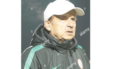 AFCON 2019: Rohr plans five friendlies for Eagles