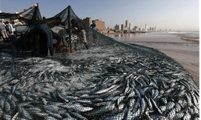 Illegal fishing: EU to assist Nigeria, others