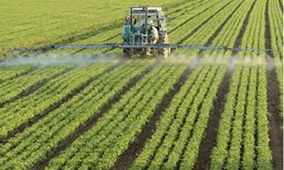 IITA-CWMP, four states sign farm pacts