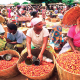 Prices of tomatoes, rice, yam reduce in July