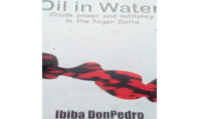 Interrogating sundry oil-related issues in Niger Delta