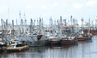 '42% of local shipping firms jobless for 3 years'