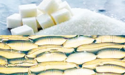 Sugar imports soar to N344.5bn despite restrictive measures