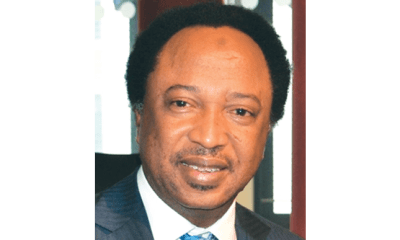 Buhari should be concerned about his place in history – Sani
