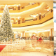 World's most expensive Christmas tree costs N4bn
