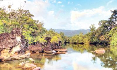 Forwardkeys predicts boom for Madagascar tourism