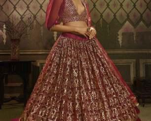 Shocking Bridal Lehenga Idea for Upcoming Wedding Season!